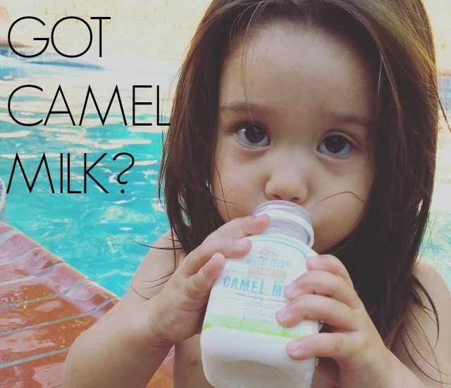 CAMEL MILK REVIEW