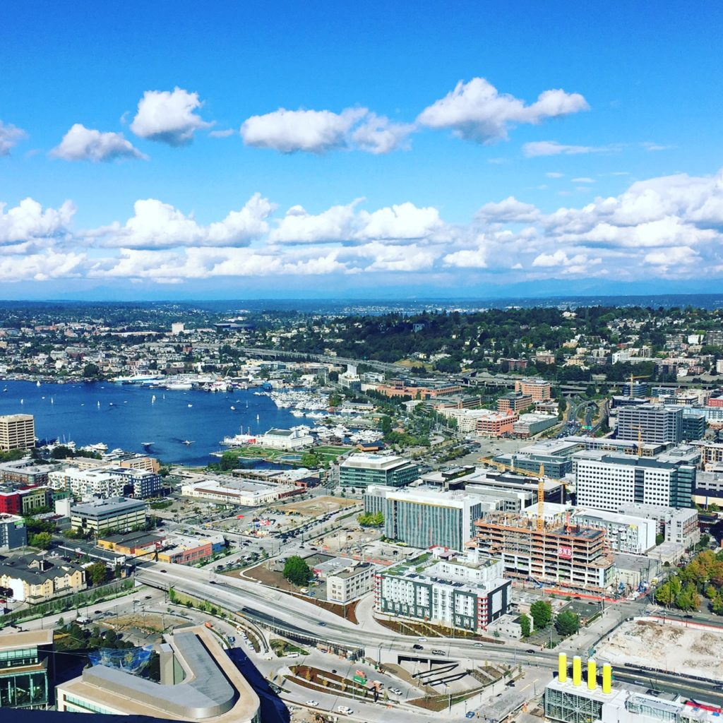 SEATTLE CITY GUIDE - gorgeous view taken from the top of the space needle