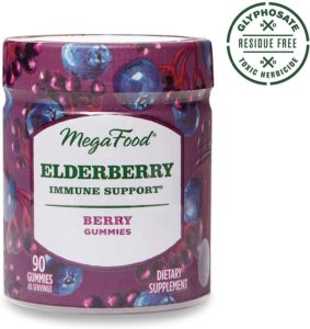 elderberry - BEST HEALTH AND WELLNESS PRODUCTS